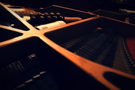 nullo-die-sine-nota-leo-project